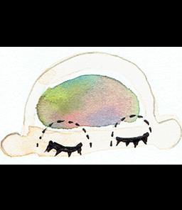 シロピチュ(イメージ)